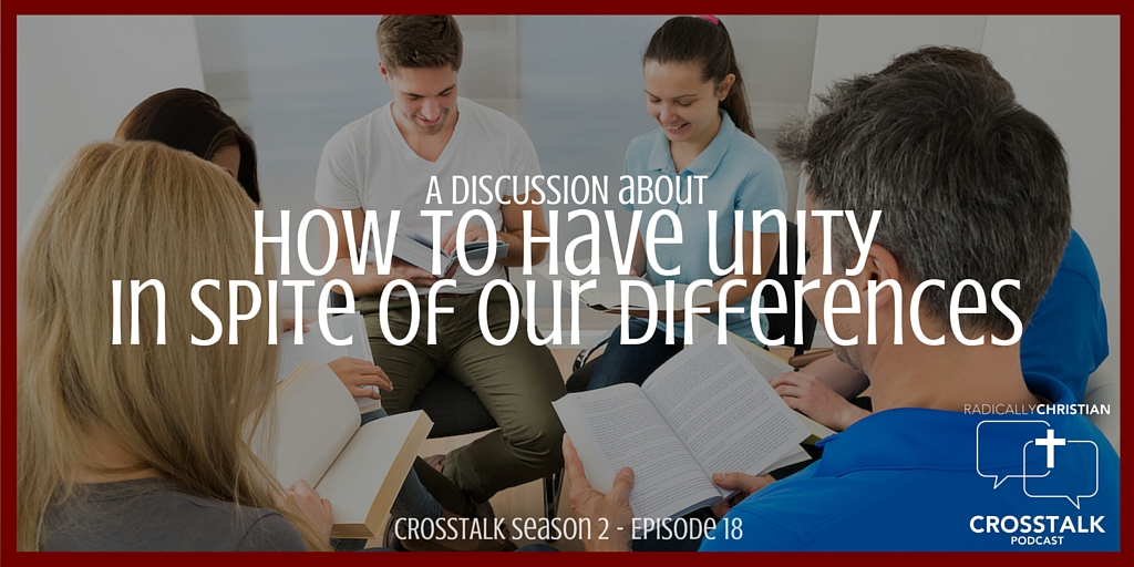 How to Have Unity in Spite of Our Differences – CrossTalk S2E18